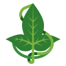 Leaf Of Lorien icon