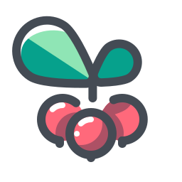 Christmas Berry icon