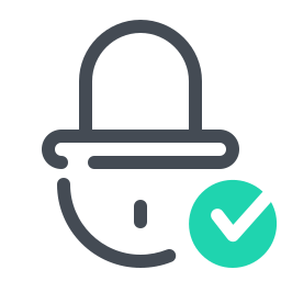 Check Lock icon
