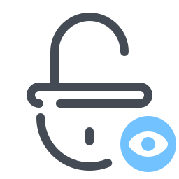 Private Lock icon