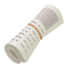 Rolled Up Newspaper icon