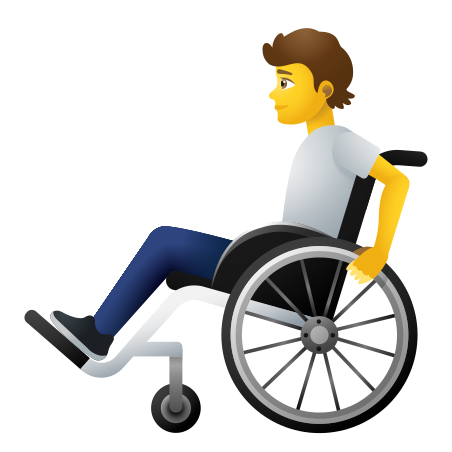 Person In Manual Wheelchair icon