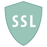 Security SSL icon
